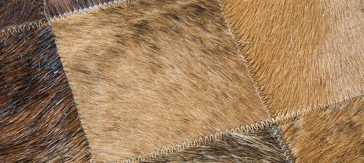 Vera pelle di cavallo utilizzata per abbigliamento, calzatura e pelletteria